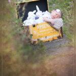 Babybauch Fotografie Story 11